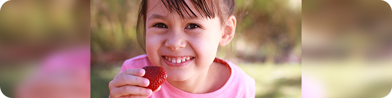 blog-photo-header---strawberry-festival.jpg
